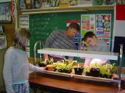 "Local elementary schools are using ""grow labs"" and ""learning gardens"" to help students learn about growing vegetables and experience the taste of fresh vegetables."
