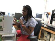 Studying fruit flies